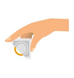 isolated condom design vector image