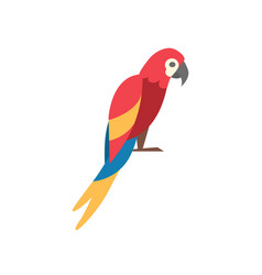 macaw parrot icon vector image