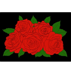 Red roses with green leaves close-up vector image vector image