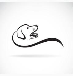 dog headlabrador retriever on white vector image vector image