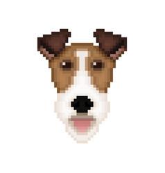 fox terrier dog head in pixel art style vector image