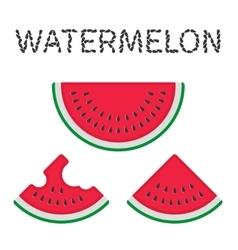 Watermelon slices vector image