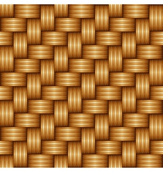Flax background vector image vector image