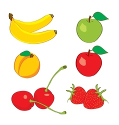 Colorful fruits in hand drawn sketch vector image