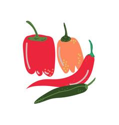 Different pepper varieties fresh vegetable hot vector