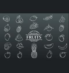 Hand drawn fruits icons set vector