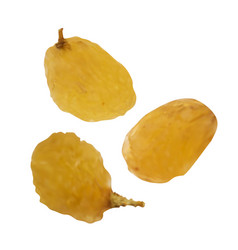 Realistic raisins on white background vector