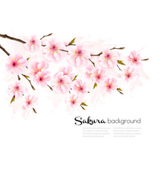 spring nature background with sakura branch vector image