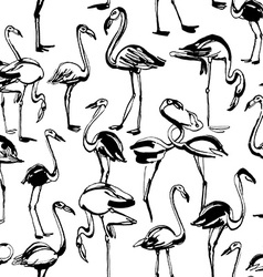 Tropical exotic birds flamingos summer seamless vector image vector image