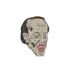 zombie head three quarter view drawing vector image