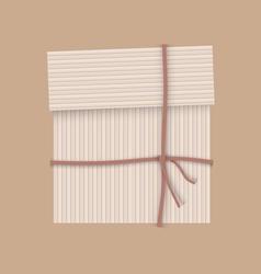 Box stripe vector image vector image