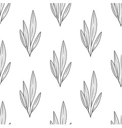 seamless plant pattern vector image vector image