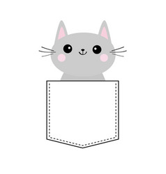 Cute gray cat in the pocket pink cheeks doodle vector