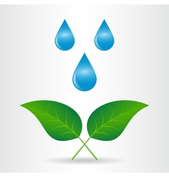 Drop leaf vector image