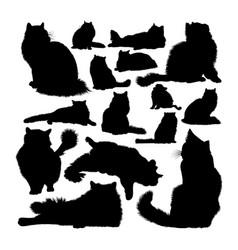 Ragdoll cat animal silhouettes vector