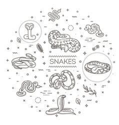 snakes icons set line design collection vector image