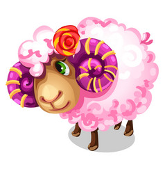 sweet pink sheep with large spiral horns vector image