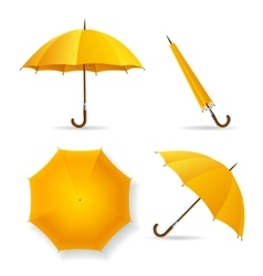 Yellow umbrella template set vector