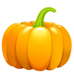 beautiful pumpkin without leafes vector image vector image