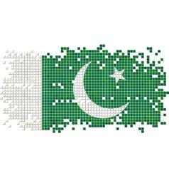 Pakistani grunge tile flag vector image vector image