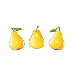 Juicy ripe pear vector image