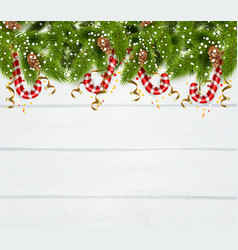 spruce twigs background vector image vector image