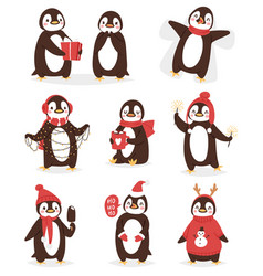 christmas cute penguin character cartoon vector image