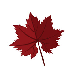 dark red maple leaf graphic vector image