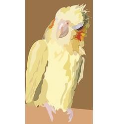I2 parrot vector