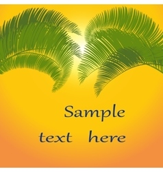 Leaves of palm tree on orange background vector image