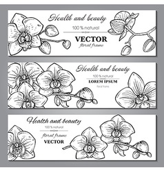 Set of three horizontal banners with beautiful vector