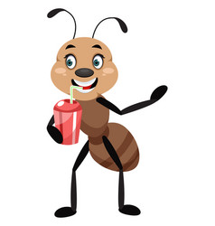 Ant drinking soda on white background vector
