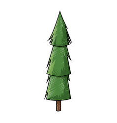 Cartoon pine tree trunk nature icon vector