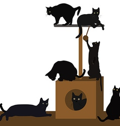 Cats playing or resting in a cat house vector