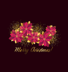 christmas red and gold poinsettia design element vector image