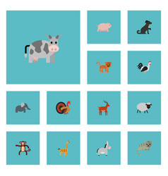 Flat icons jackass swine panther and other vector
