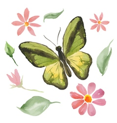Green butterfly and flowers vector