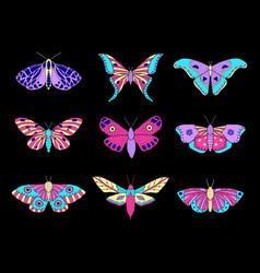 Moths and butterflies vector