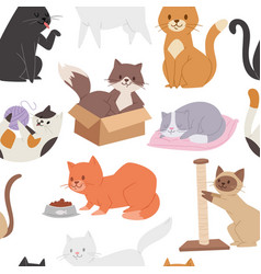 seamless pattern with cute tabby kittens cartoon vector image