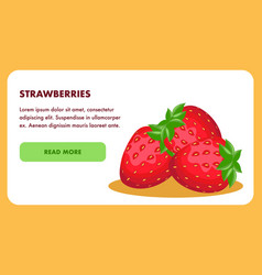 strawberries landing page template with text space vector image