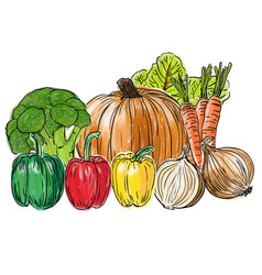 types of fresh vegetables still life vector image