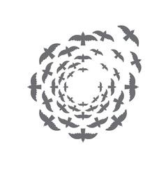 bird circle design template vector image