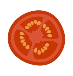 Tomato slice isolated vector image vector image