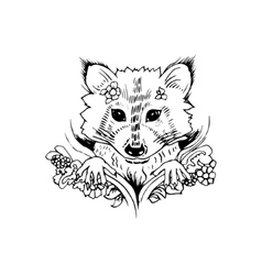 Abstract graphic raccoon print vector image vector image