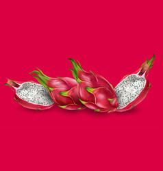 dragon fruit on bright red background vector image