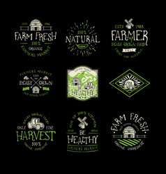 farm fresh and natural food vector image