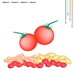 Fresh Cherry Tomatoes with Vitamin C A and K vector