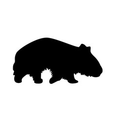 Wombat silhouette vector