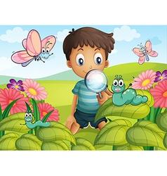 A little boy in the garden vector image vector image