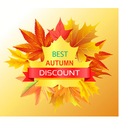 best autumn discount promo advertisement on yellow vector image